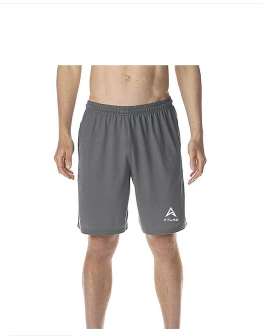 ATLAS performance short