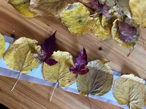 Fall Leaf Crowns