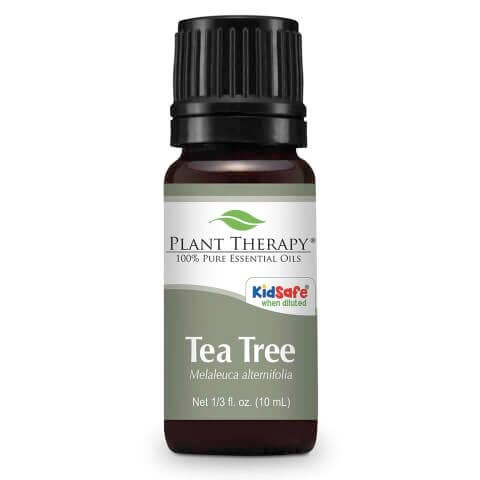 *NEW* Plant Therapy Tea Tree Essential Oil