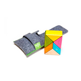 *NEW* Tegu Pocket Pouch Prism