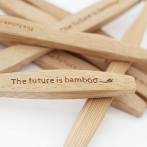 The Future is Bamboo Kid's Toothbrush - Single