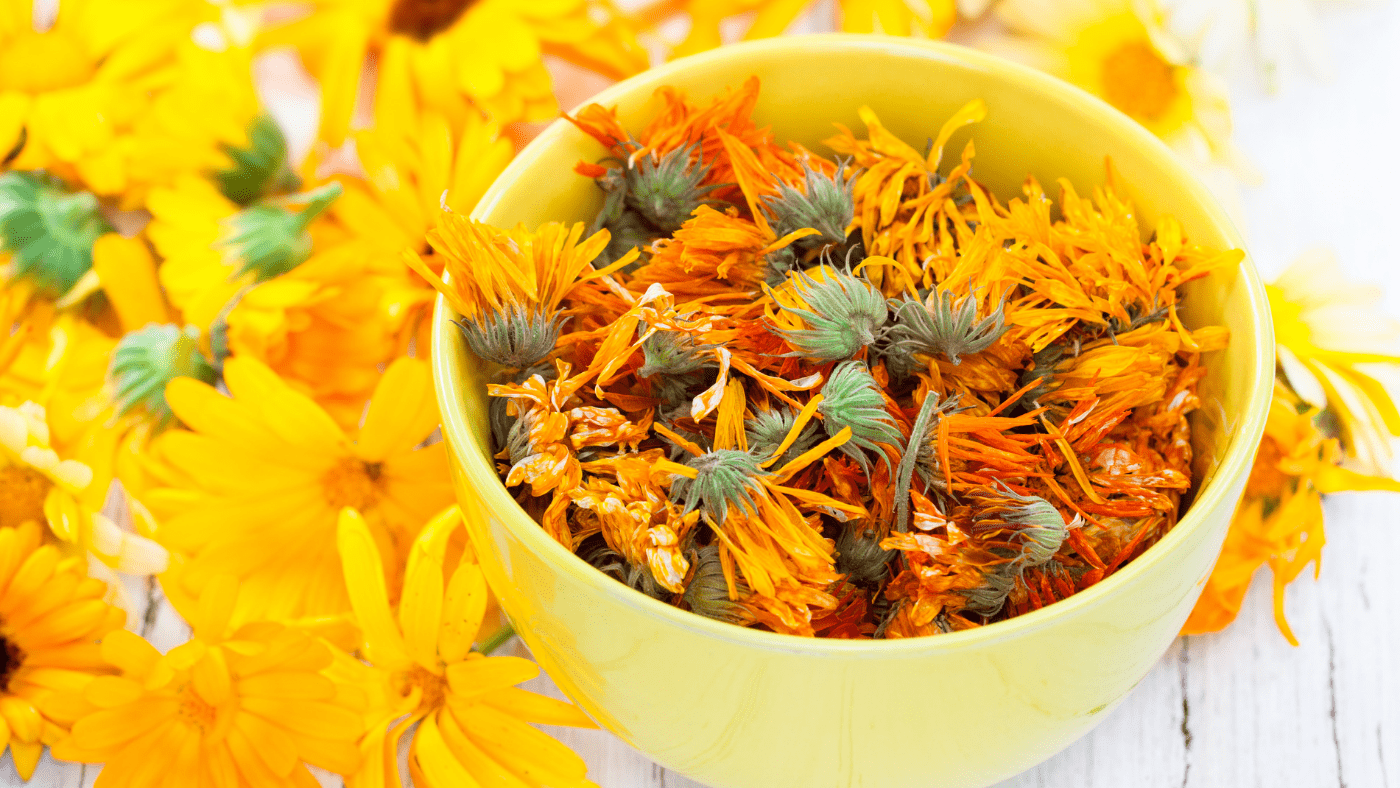 calendula flower in a bowl and on the side of bowl