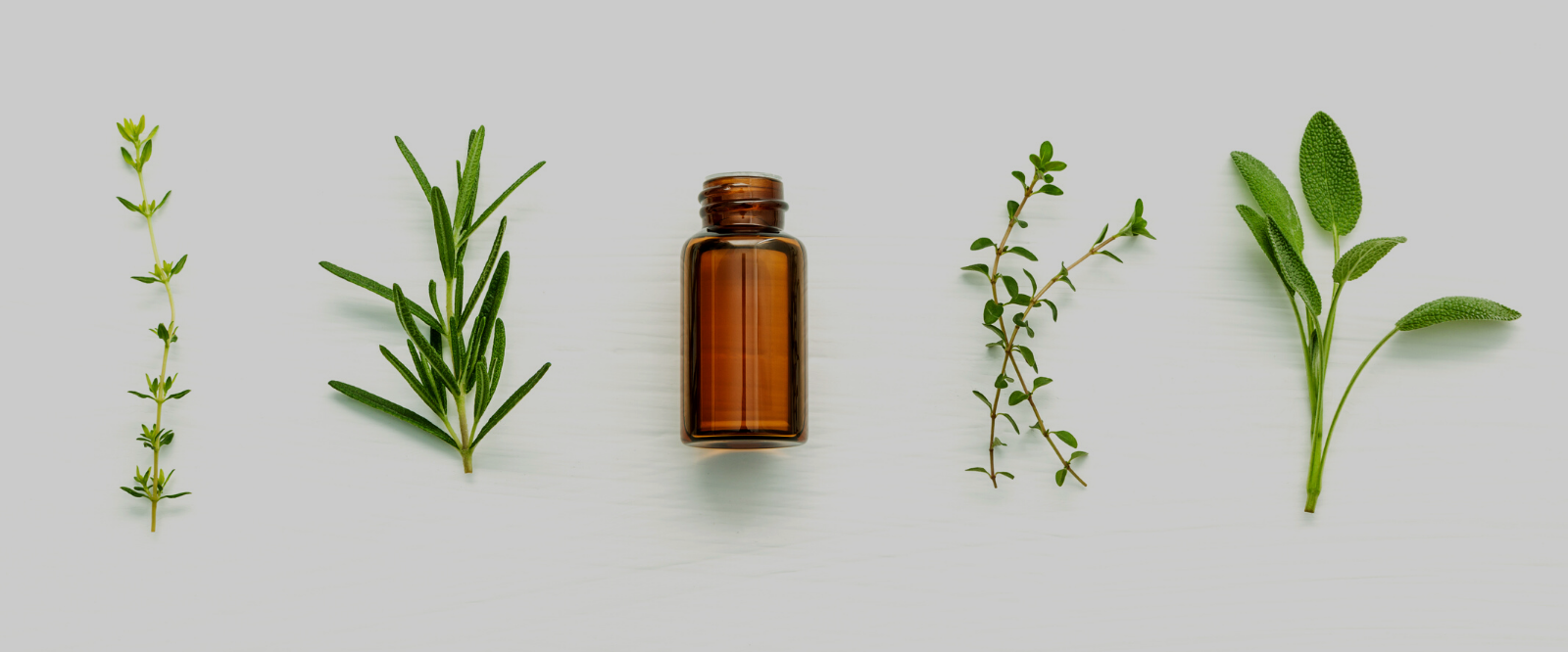 bottle of essential oil perfume next to herbs for herbal skincare