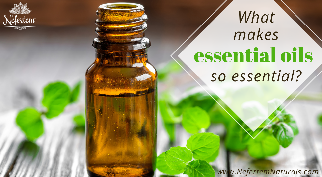 essential oils nefertem
