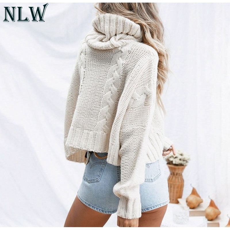 Long Sleeve Turtleneck Crop Sweater Autumn Winter Thick Solid Harajuku Oversized Pullover White Kintted Jumper Tops