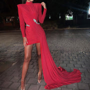 Women  High Neck Long Sleeve Bodycon Long Tail Without Belt  Dresses Female Elegant Solid Color Mini Dress