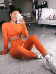 Women Seamless Yoga Sets Leggings Sport Fitness Suit Gym  Leggings Shirts Suit Long Sleeve Yoga Sets Fitness Workout Sports