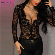 Women Sheer Eyelash Lace Long Sleeve Bodysuit Sexy & Club Skinny Solid Plunge Low Cut Out Neck See Through Bodysuits