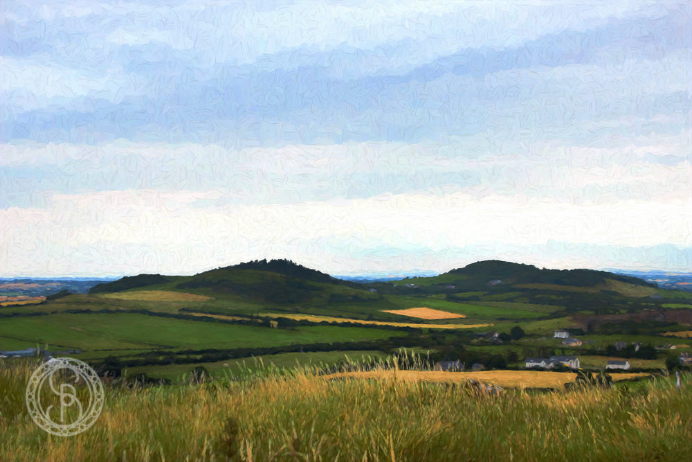 Rock of Dunamaise. View from. no. I