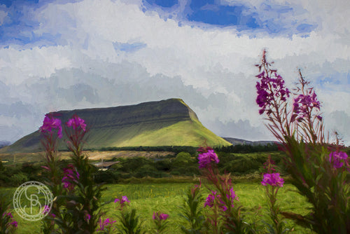 Benbulben with pink flowers