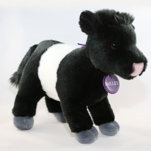 Barley the Beltie Soft Toy