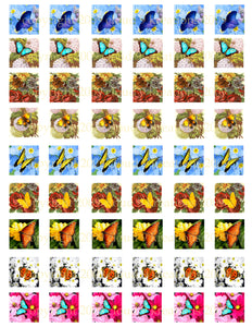 "Butterfly Flower 1""x1"" Square Digital Collage Sheet"
