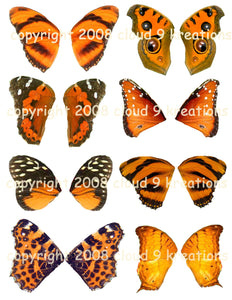 Orange Butterfly Wings Digital Collage Sheet
