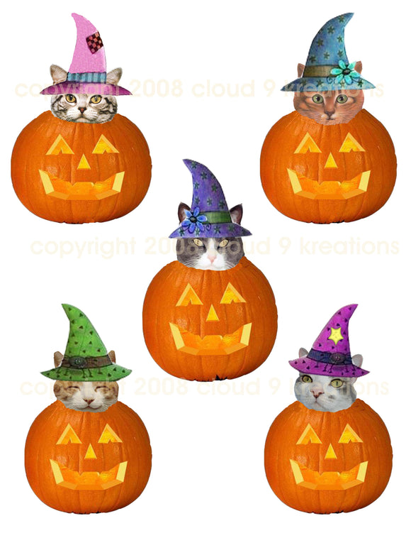 Halloween Witch Cats in Jacks Digital Collage Sheet