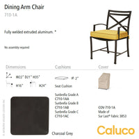 San Michelle Dining Arm Chair by Caluco - LoftModern - 2