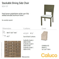 10 Tierra Stackable Dining Side Chair by Caluco - set of 2 | Caluco | LoftModern