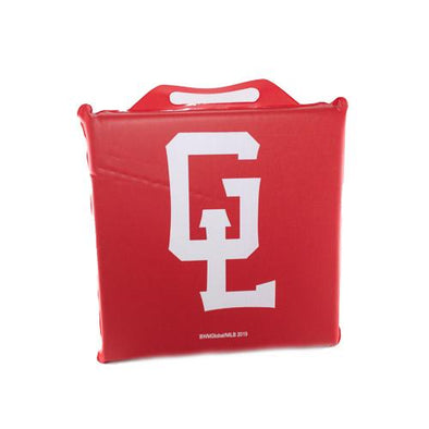 Great Lakes Loons Seat Cushion