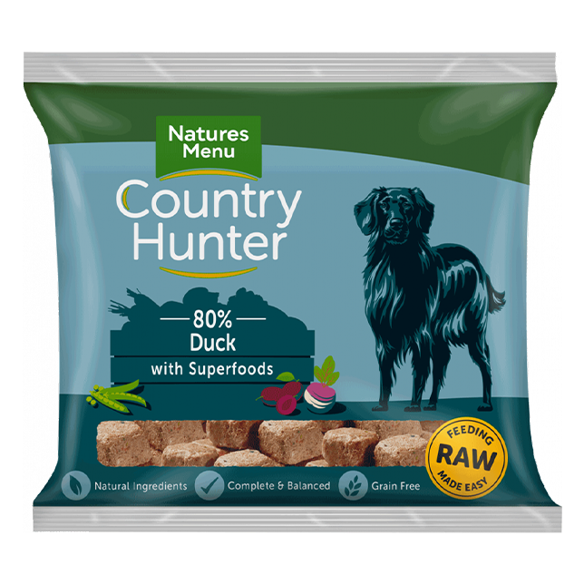 Country Hunter Raw Nuggets - Duck with Superfoods for Adult Dogs