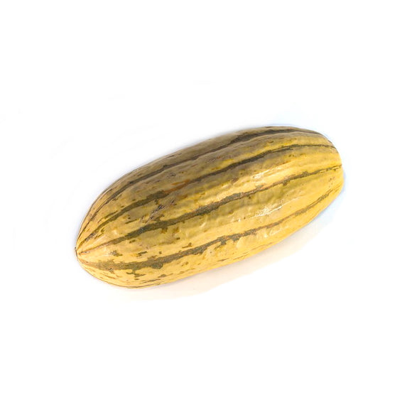 Delicata Squash (Friday)