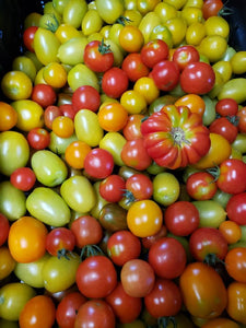 Heirloom tomatoes, cherry, pint (Friday)