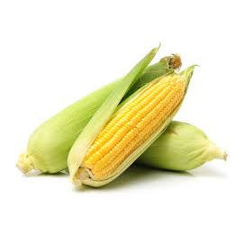 Corn (Friday)