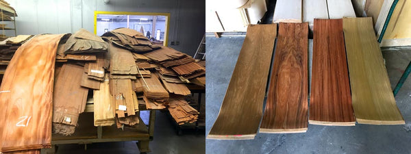 Electric Longboard Wooden Veneers