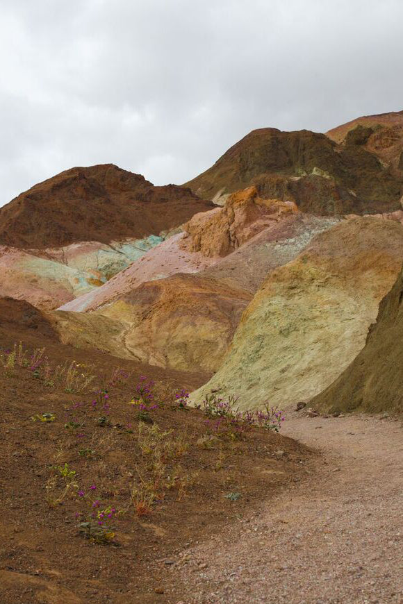 a landscape in Death Valley that includes multiple colors of earth