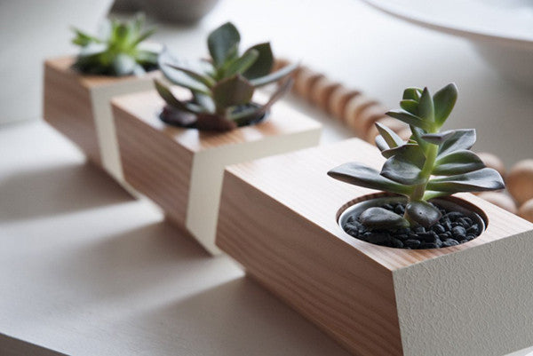 revolution design house boxcar planter