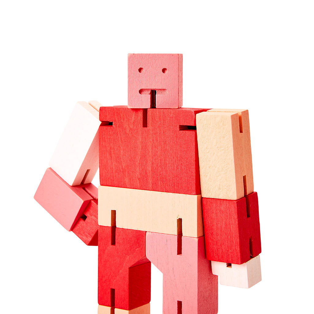 Cubebot Red Multi