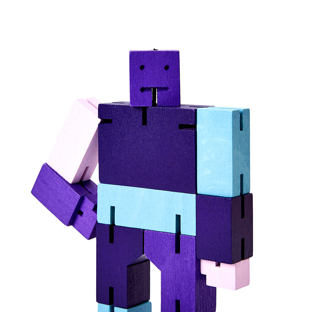 Cubebot Purple Multi