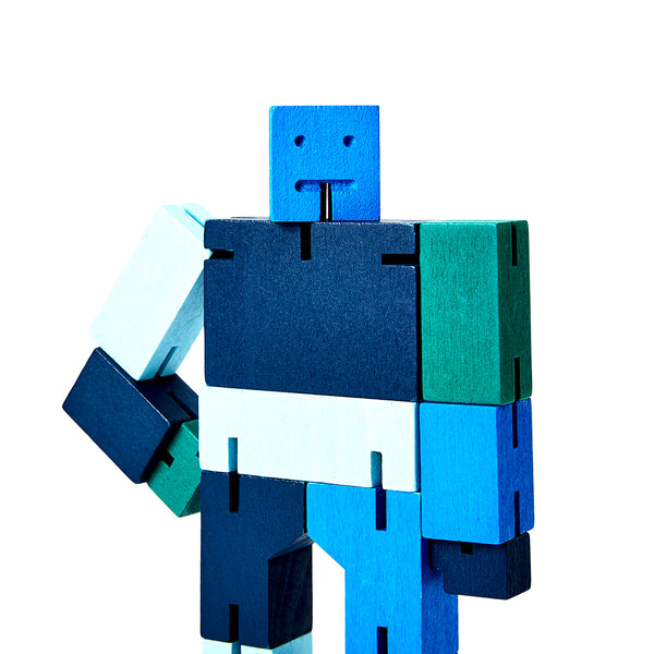 Cubebot Blue Multi