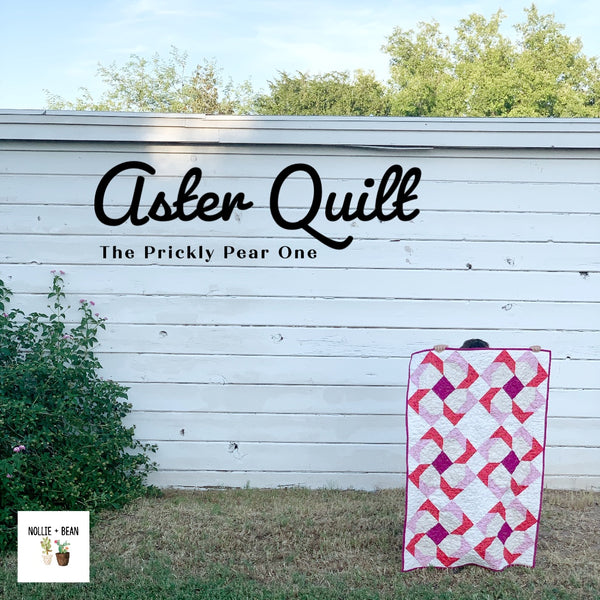 Aster Quilt - The Prickly Pear One