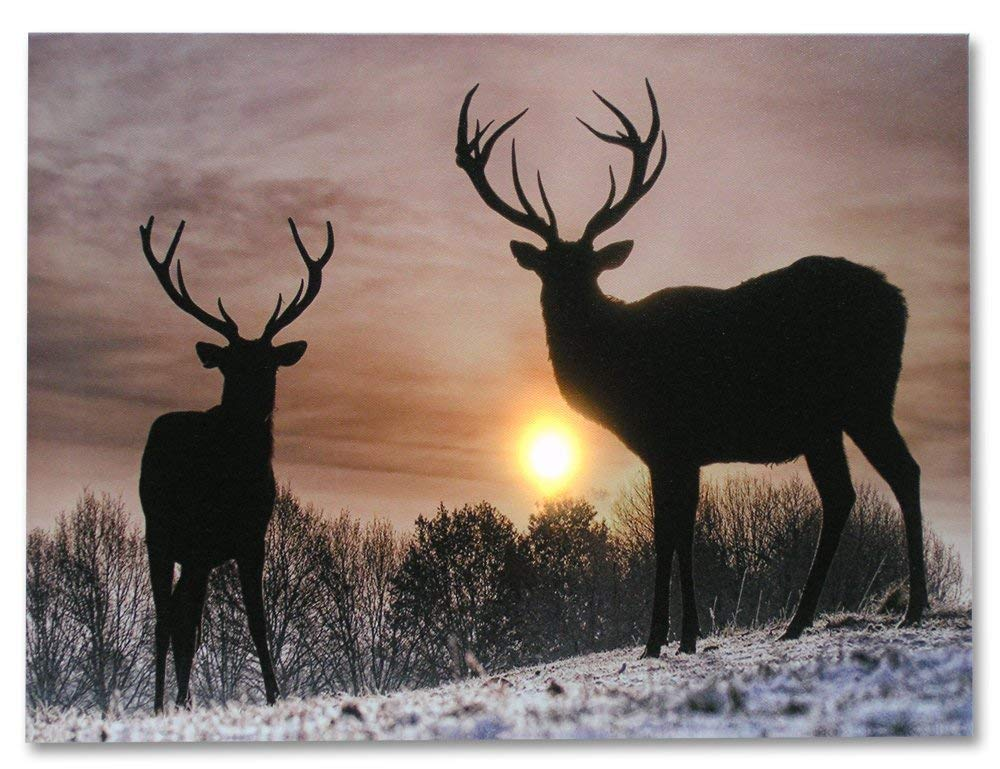 BANBERRY DESIGNS Deer Winter Scene - Light Up Deer Picture - LED Wrapped Canvas Print Shows 2 Deer with Large Antler Racks - Wildlife Wall Decoration