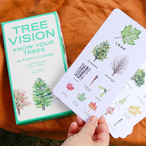 Tree Vision Cards