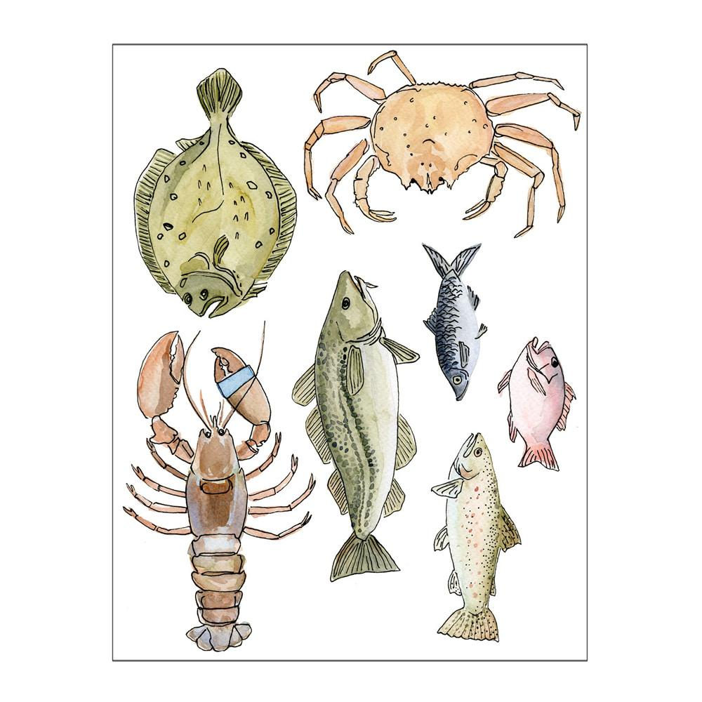 Greeting Cards - Atlantic Fish Postcard