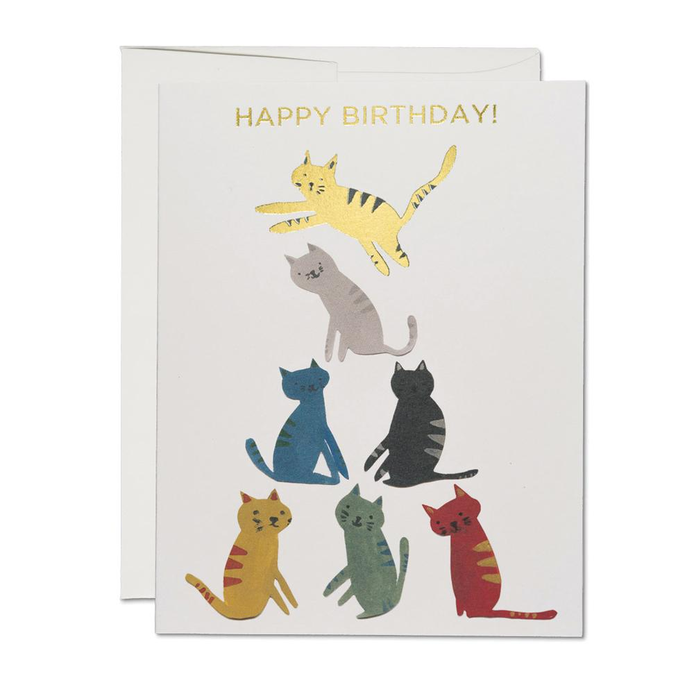 Greeting Cards - Kitty Pyramid Card