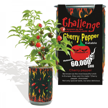 Cherry Pepper (Wiri Wiri) Growing Kit - Lucifer's House of Heat