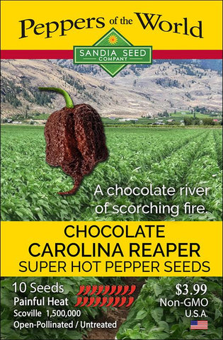 Chocolate Carolina Reaper Seeds - Lucifer's House of Heat