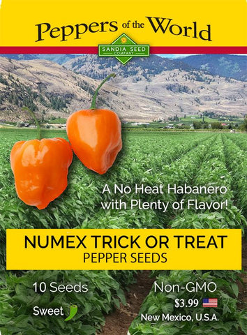 NuMex Trick or Treat Habanero - No Heat - Pepper Seeds - Lucifer's House of Heat