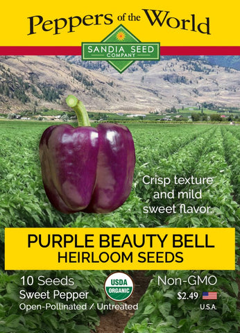 Bell Purple Beauty Sweet Pepper Seeds ORG - Lucifer's House of Heat