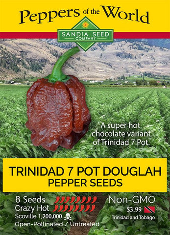 Trinidad Douglah / Chocolate 7 Pot Pepper Seeds - Lucifer's House of Heat