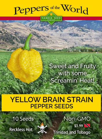Yellow Brain Strain / Yellow 7 Pot Pepper Seeds - Lucifer's House of Heat