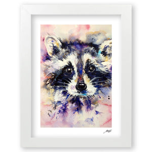 Raccoon - Art Print by Jo Allsopp