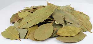 Bay Leaves whole (Laurus Nobilis)