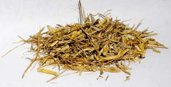 Witches Grass, Cut (Agropyron Repens)
