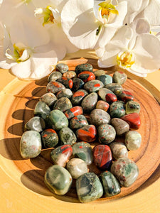 Bloodstone | Star Soul Metaphysics