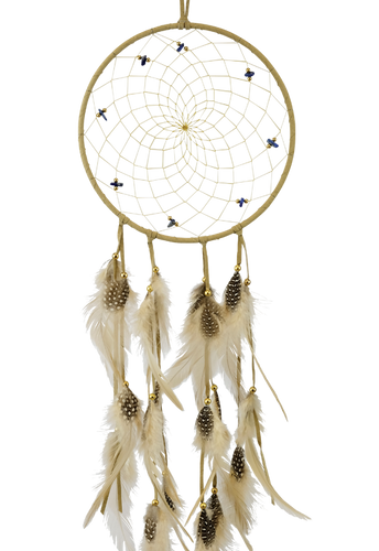 Dream Catcher 6