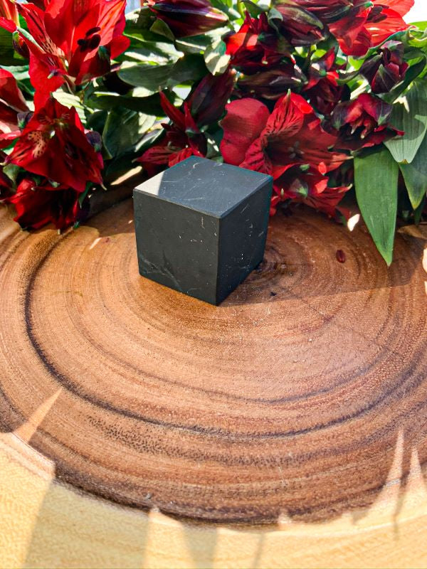Shungite Cube | Star Soul Metaphysics
