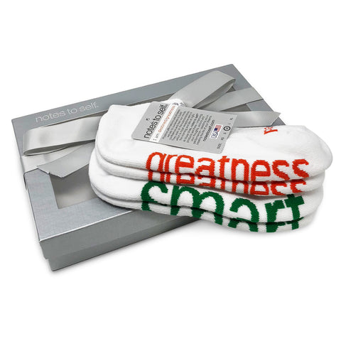 sock gift set i am destined greatness socks i am smart socks in silver gift box