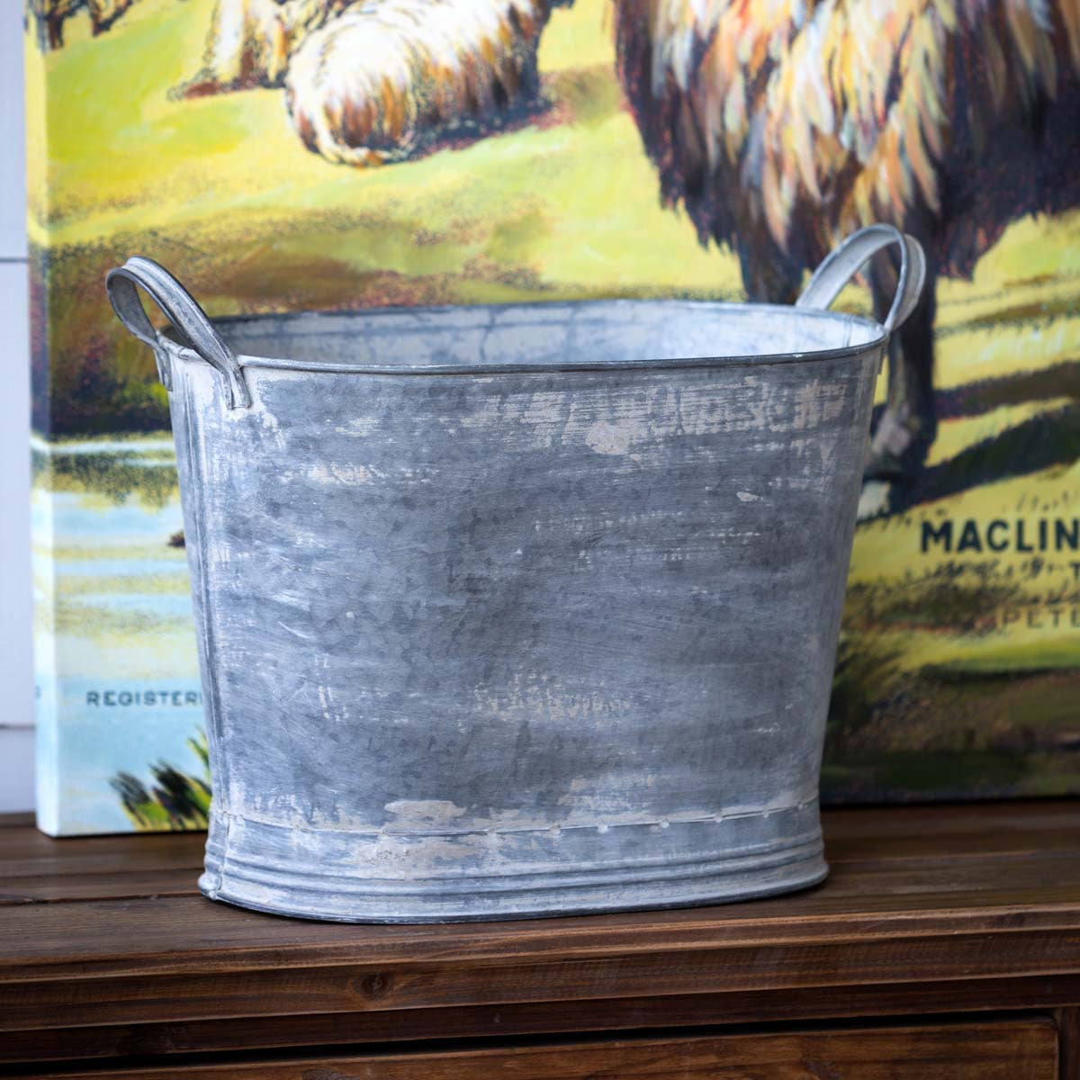Tall Galvanized Tub Planter